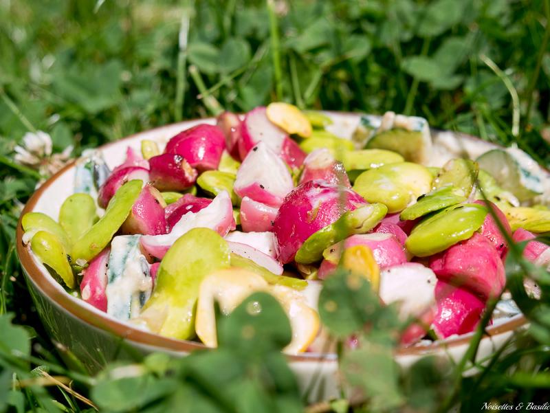 Une belle salade d'été à manger sur l'herbe