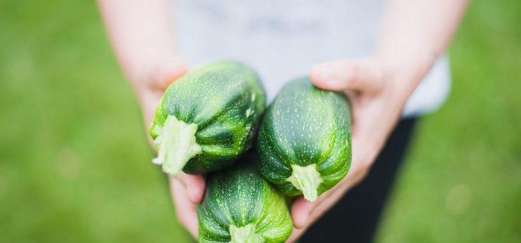 L'alimentation bio et de qualité devrait être notre priorité pour notre santé et notre planète