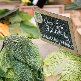 Quelles sont les raisons pour manger des légumes bio qui sont pourtant plus cher ? Entre environnement et santé, un lien humain fort.