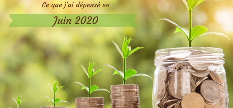 Coût de l'alimentation écologique – juin 2020