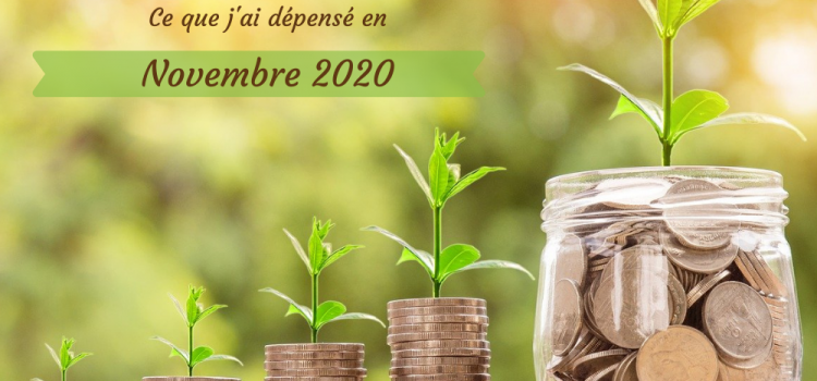 Combien coûte une alimentation bio, locale, de saison et zéro déchet, bref, écologique ? Je te dis tout dans ce bilan de dépenses pour le mois de novembre 2020 !