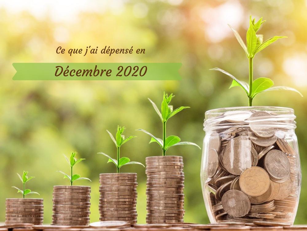 Combien coûte une alimentation bio, locale, de saison et zéro déchet, bref, écologique ? Je te dis tout dans ce bilan de dépenses pour le mois de décembre 2020 !