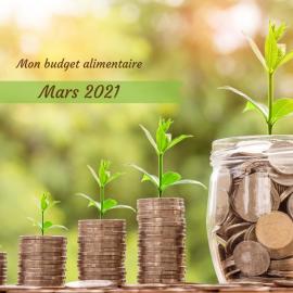 Combien coûte une alimentation bio, locale, de saison et zéro déchet, bref, écologique ? Je te dis tout dans ce bilan de dépenses pour le mois de mars 2021 !
